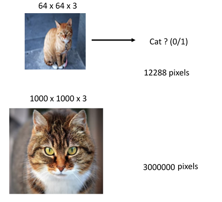 Examples of number of pixels in two different sized images, computer vision