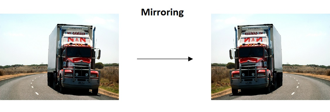Cat - Mirroring, Data augmentation