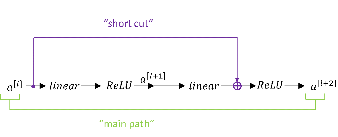 Main path and short cut connection