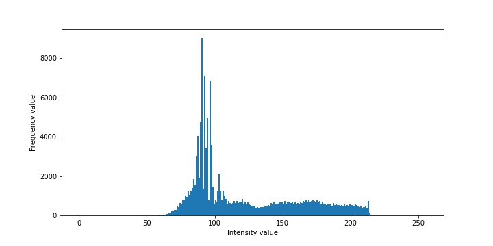 Histogram of an image in 1D