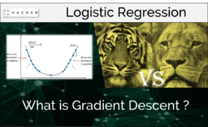 what is gradient descent