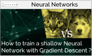 How to train a shallow neural network with gradient descent