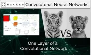 one layer of a convolutional neural network