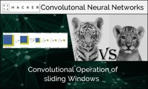 convolutional operation of sliding windows