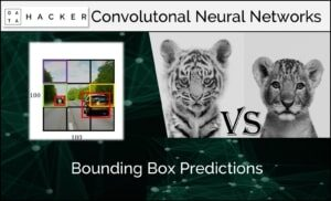 Bounding box predictions