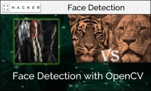 opencv - face detection with video