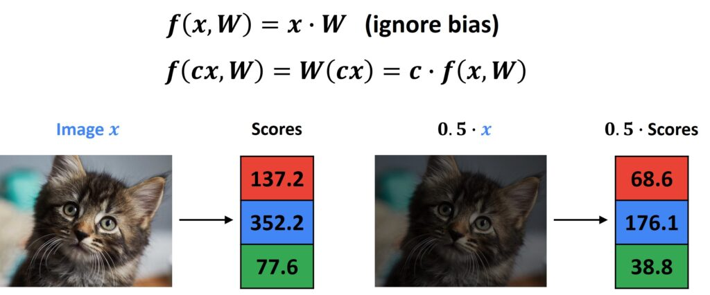 Linear Classifiers PyTorch