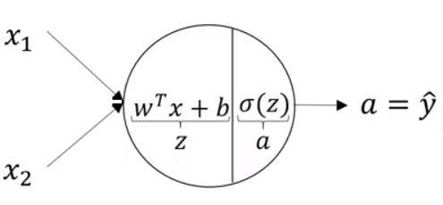 neural network representation