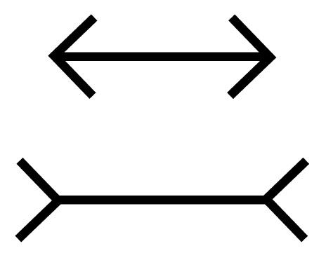 weak-perspective-lines