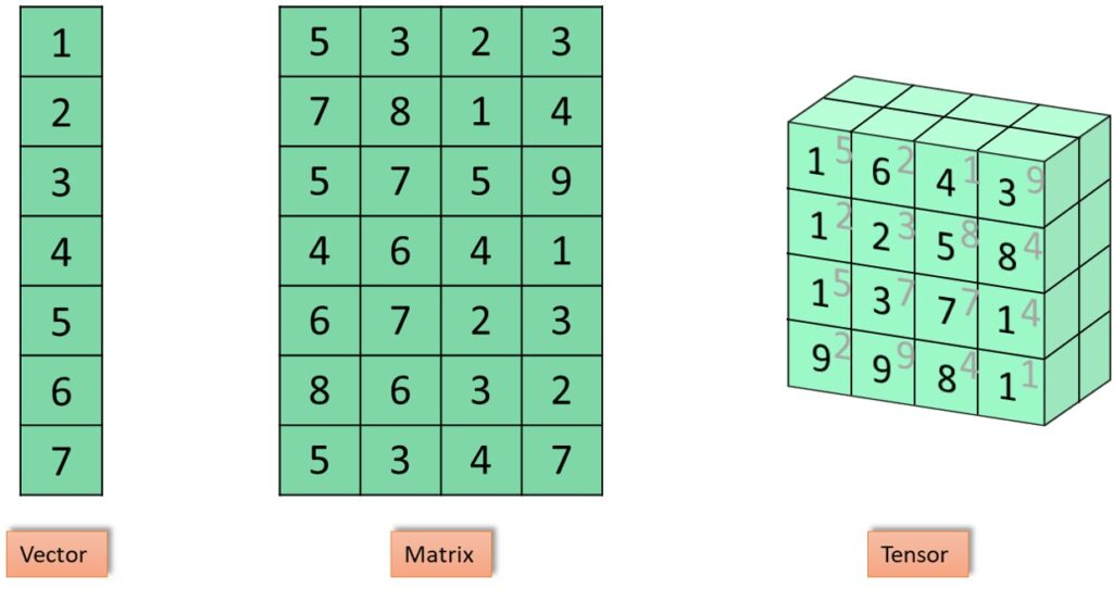 Vectors Matrices and Tensors