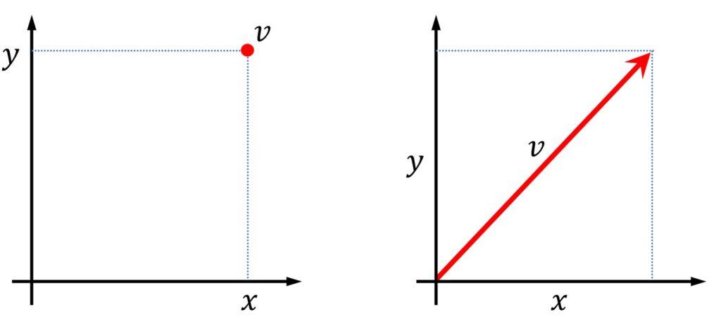 position vs. vector