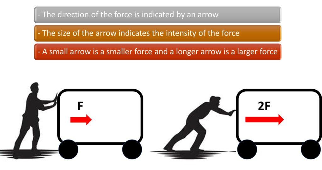 vectors force direction size