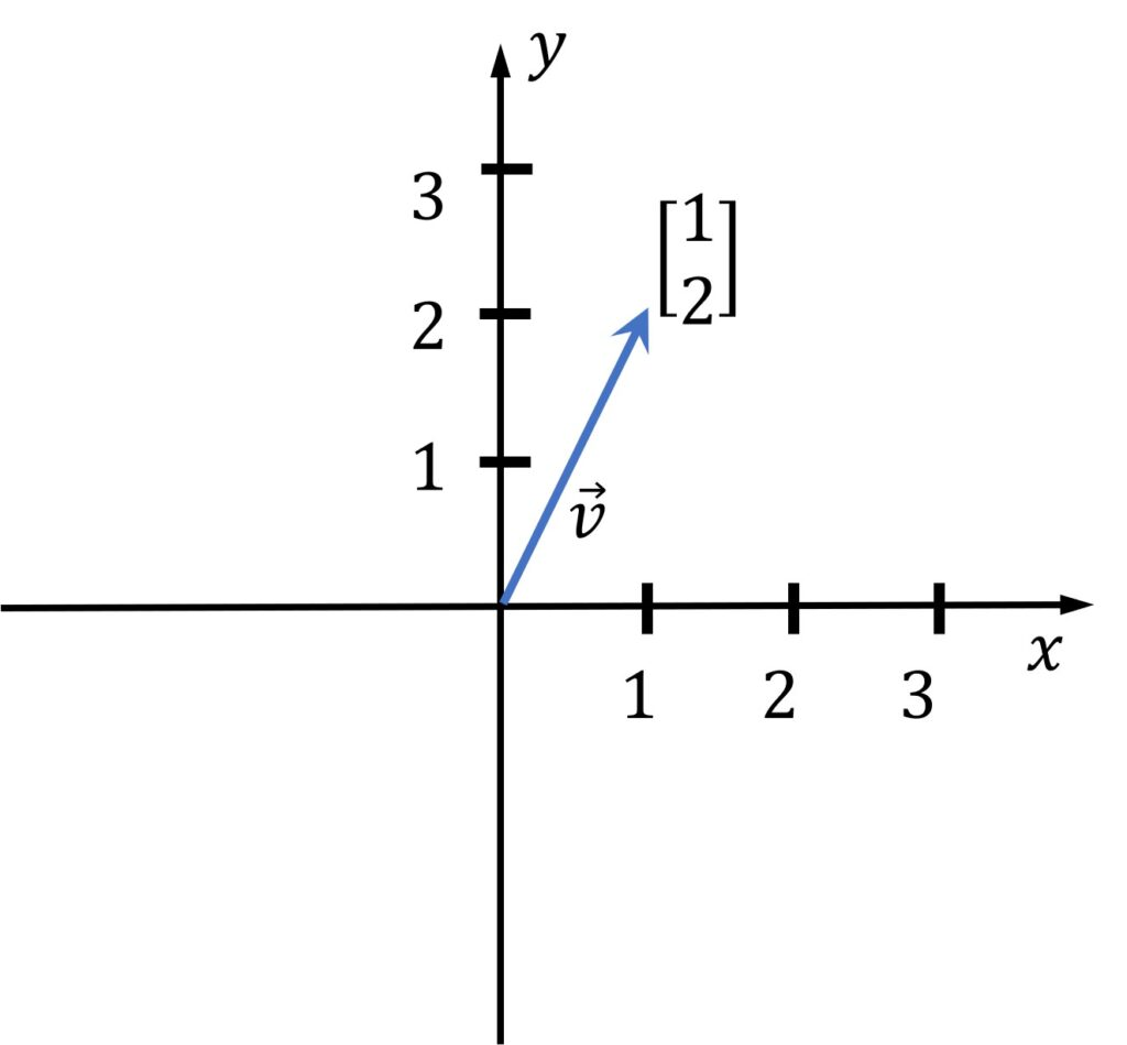 what is a vector