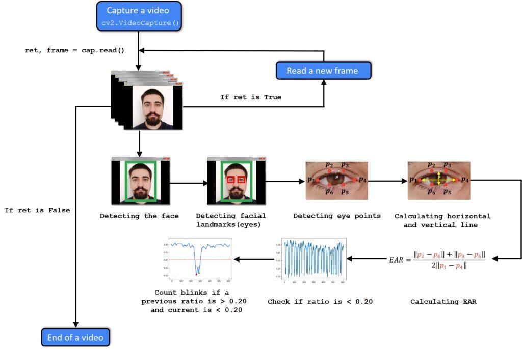 eye blinking diagram